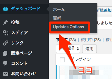 Easy Updates Managerの設定場所